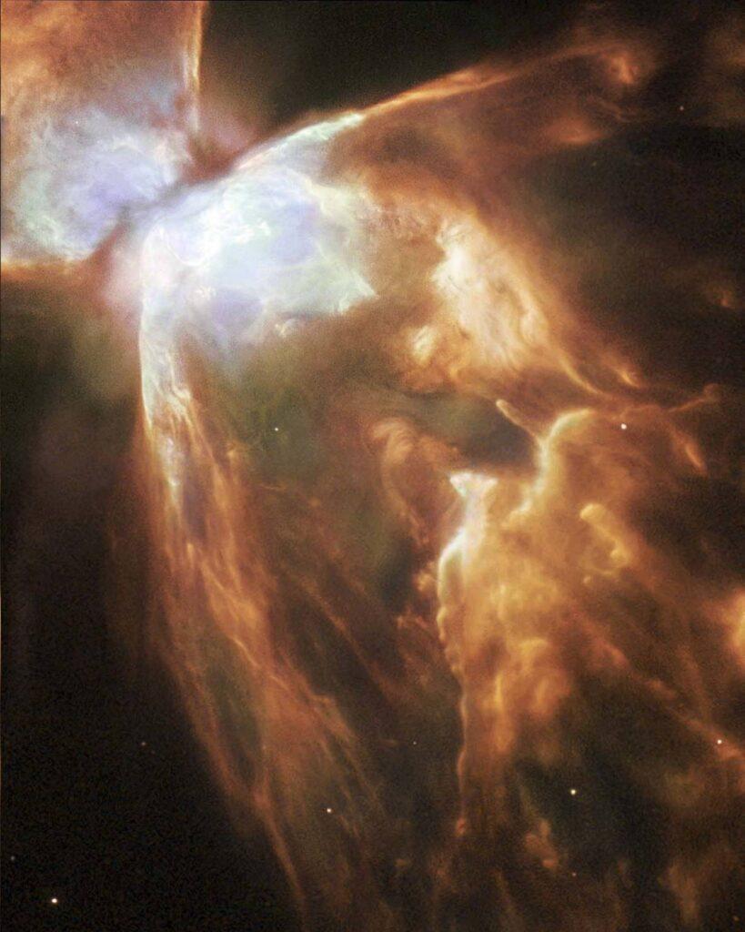 Nebulosa del Insecto
